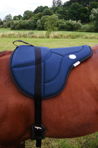08-bareback_pad_english_style_horse